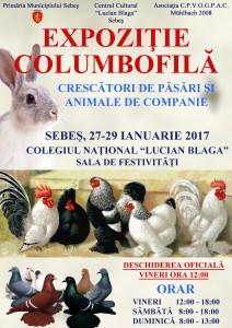 sebes expozitie columbofila