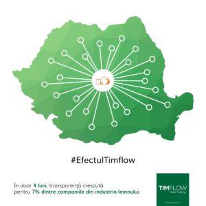 efectul timflow