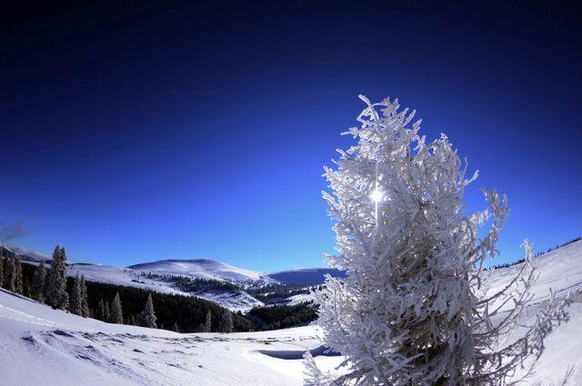 Starea pârtiilor de schi din județul Alba până în data de 25 ianuarie. Detalii și sfaturi de la profesioniști!