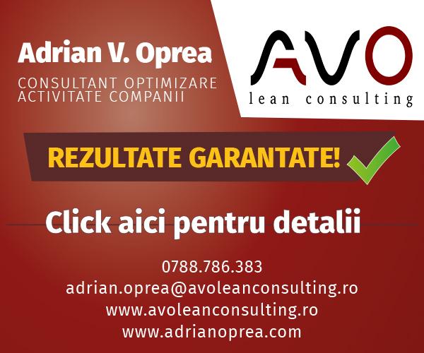 banner AvoleanConsult