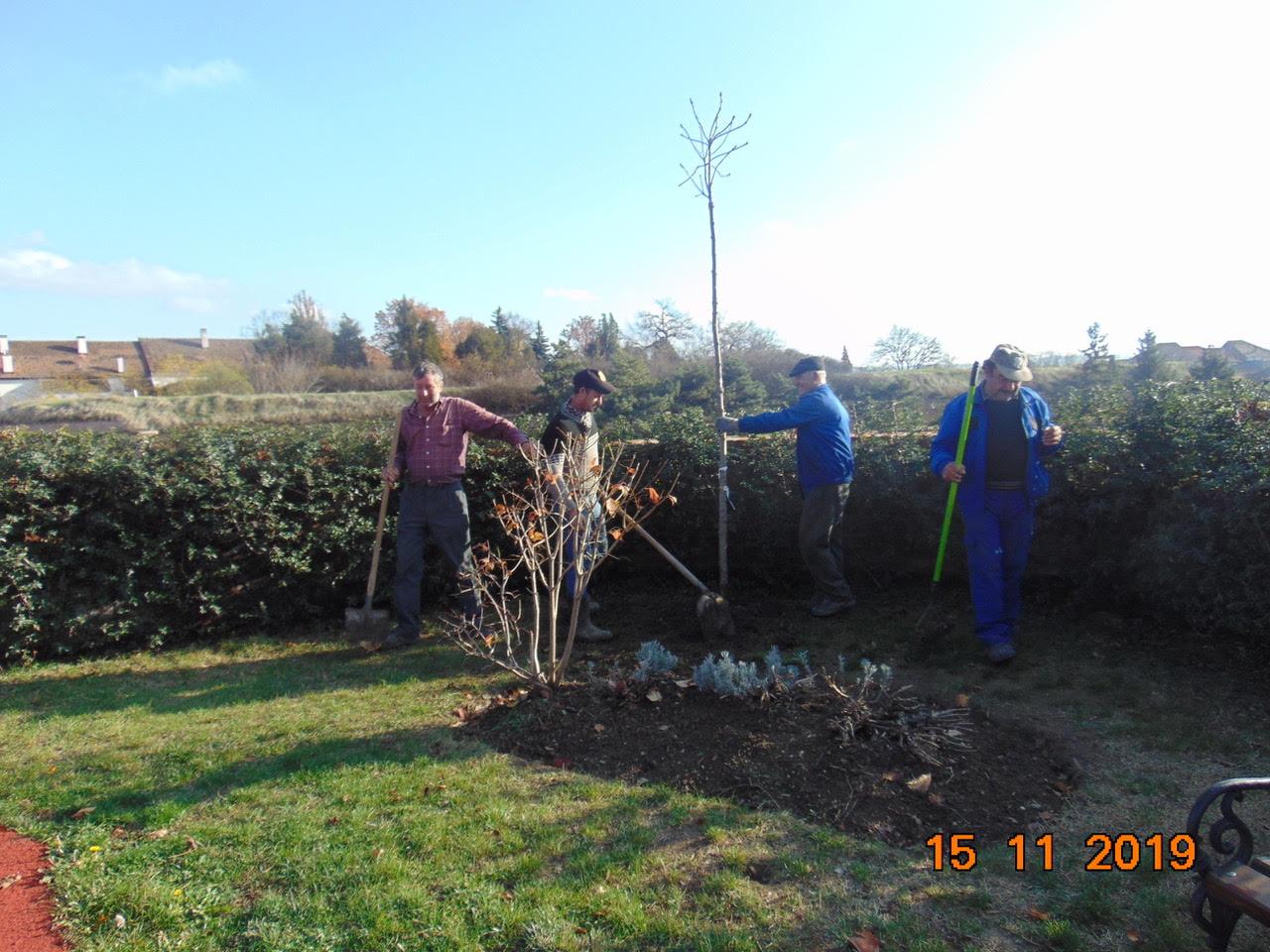 Peste 100 de copaci, 1200 arbuști ornamentali și 66000 de flori, parte din campania de refacere a zonelor verzi din Alba Iulia