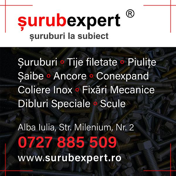 banner surub expert
